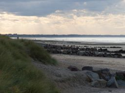 les-5-meilleures-plages-autorisees-aux-chiens-en-france